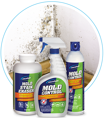 Removing Tough Mold