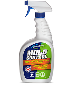 How To Remove Mold In Boats Concrobium