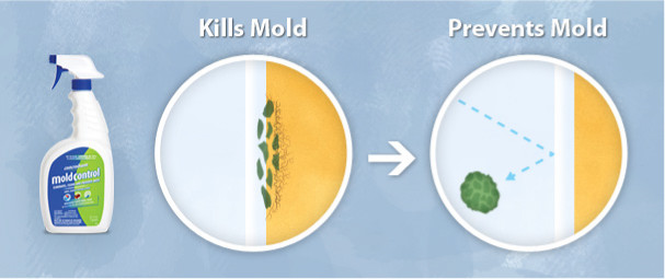 Concrobium works to effectively crush the mould spores