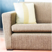 How To Remove Mold On Furniture Upholstery