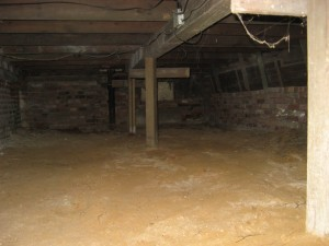 Have mold in your crawlspace but don't know how to remediate